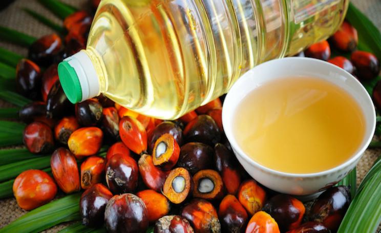 Olio di palma miti da sfatare e luoghi comuni