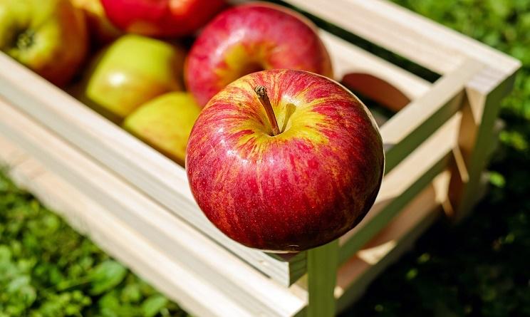 alimentazione e colori, cibo e colori, colore cibo, codice colore, codice colore alimentazione,