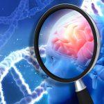 Alzheimer lampi di luce per stimolare il cervello