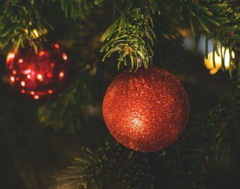 Natale 2017 idee regalo per lei: dal fenicottero rosa agli unicorni