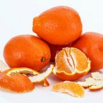 Vitamina C e scorbuto nuovi casi in europa