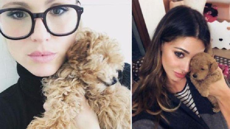 Belen Rodriguez, incinta del compagno Andrea Iannone?