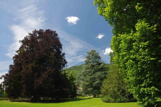 Parco delle Terme di Levico giardini italiani