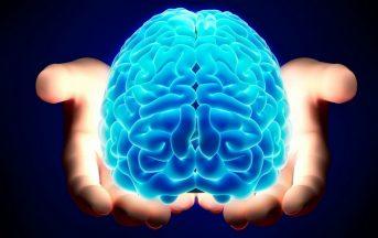 Alzheimer: dove finiscono i ricordi paurosi? Svelata nel cervello la 'mappa del terrore'