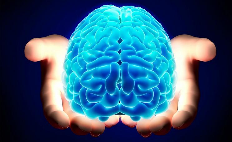 Alzheimer, svelata nel cervello mappa del terrore dove risiedono i ricordi paurosi