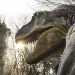Mostre Napoli 2017 dai dinosauri a Leonardo Da Vinci ecco quelle imperdibili