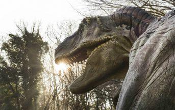 Mostre Napoli 2017: dai Dinosauri a Leonardo Da Vinci, ecco quelle imperdibili