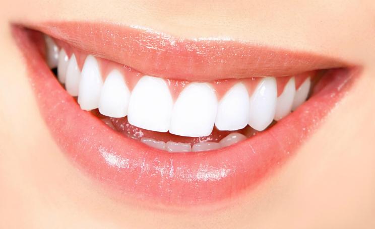 Quanti denti abbiamo, il numero influenza aspettativa di vita