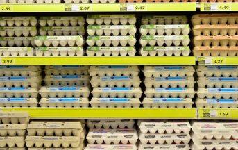 Etichette alimentari: imparare a leggerle per una spesa consapevole