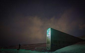Svalbard Global Seed Vault: la banca dei semi si arricchisce di 50mila nuovi arrivi