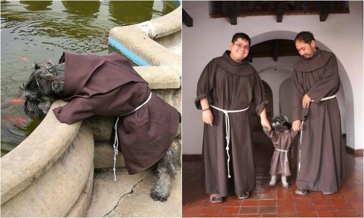 cane frate, cane diventato frate, cane adottato dal monastero,