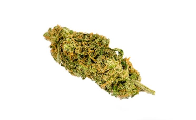 marijuana cura per ansia e dipendenza