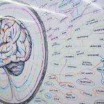 settimana mondiale del cervello 2017