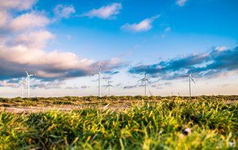 """Le professioni più richieste nel settore """"green"""": quando la creatività è sinonimo di sostenibilità"""