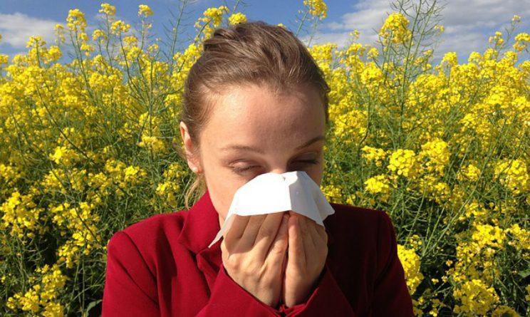 Allergia ai pollini, le regole da seguire secondo il ministero della salute