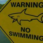 Australia Ragazza 17 enne muore davanti al padre dopo essere stata morsa da uno squalo