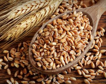 Farro: proprietà per il corpo, calorie e valori nutrizionali
