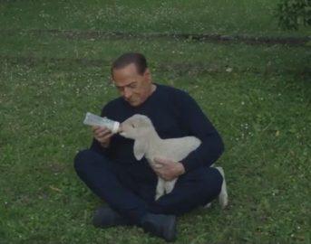 Berlusconi animali: il Cavaliere dà vita al primo Movimento politico Animalista