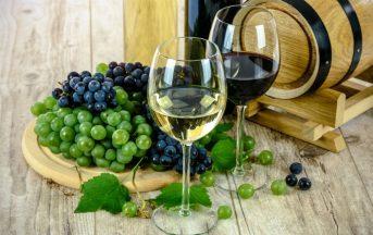 Il lavoro più bello del mondo? L'assaggiatore di vini che gira per l'Italia: ecco come candidarsi
