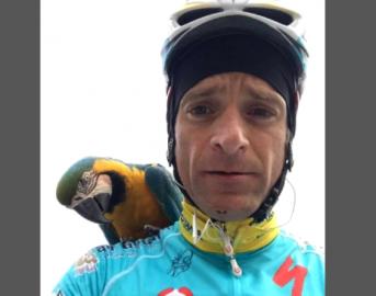 Michele Scarponi pappagallo: Frankje gli rende omaggio sul luogo dell'incidente mortale (FOTO)