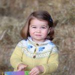 charlotte windsor, principessa charlotte, charlotte figlia di kate middleton, kate middleton figli, charlotte d'inghilterra, charlotte 2 anni,