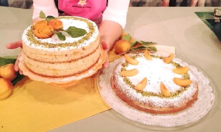 La prova del cuoco ricette dolci oggi, la prova del cuoco ricette dolci, la prova del cuoco ricette oggi, la prova del cuoco 29 maggio 2017, torta all'albicocca in padella natalia cattelani, torta all'albicocca in padella la prova del cuoco,