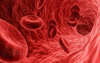 Anemia: nuovo farmaco potrebbe evitare le trasfusioni ai malati