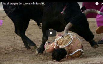 Francia, il torero Ivan Fandino muore incornato durante la corrida (VIDEO)
