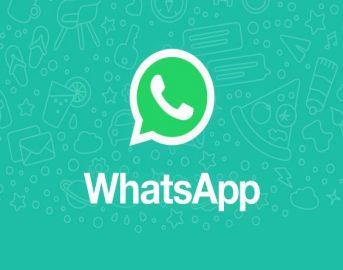 Whatsapp news: foto, nuove modalità d'invio con la versione beta 2.17.202