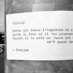 fenejum