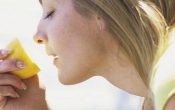 Obesità: annusare il cibo potrebbe fare ingrassare? La scoperta di un team di scienziati