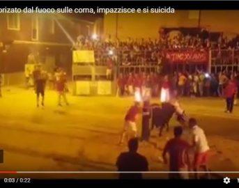 Orrore in Spagna: fiamme alle corna del Toro che impazzisce e si suicida (VIDEO)