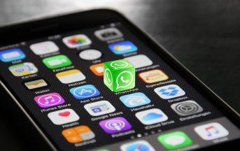 Aggiornamento WhatsApp Android e iOS: da oggi sarà possibile condividere qualsiasi file