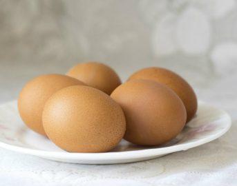 Milioni di uova contaminate: allarme in tutta Europa