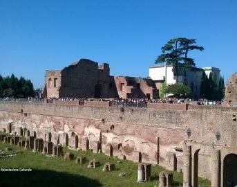 Il Palatino: la residenza imperiale dell'Antica Roma