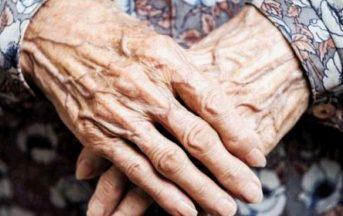 Milano 80enne violentata al Parco Nord: le sue agghiaccianti rivelazioni sullo stupratore