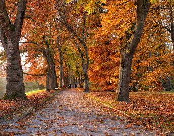 Equinozio d'autunno 2017 data: perché è il 22 settembre?