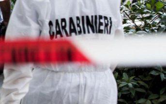 Luzzara, mamma uccide i due figli e tenta il suicidio
