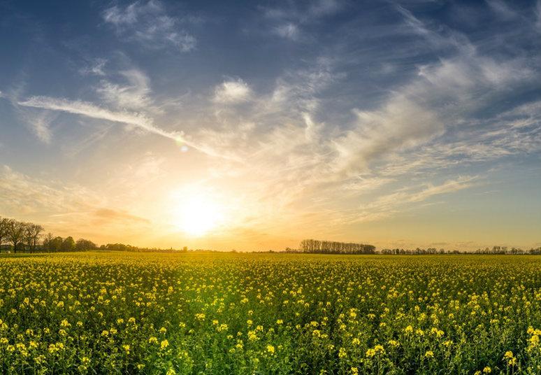 Meteo weekend, tempo soleggiato con temperature in diminuzione: possibile ritorno dell'inverno