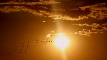 Meteo prossimi giorni: ancora caldo africano, poi la svolta