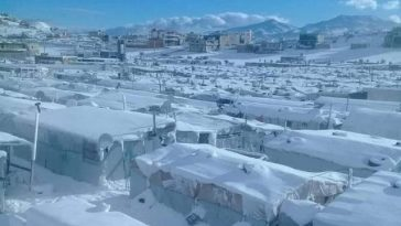 amatrice campo profughi libano