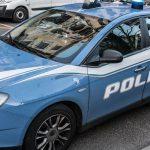 Gattino Ucciso Salerno