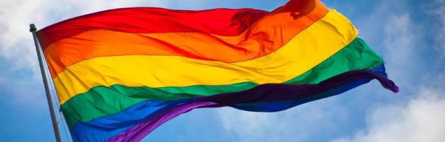 giornata internazionale omofobia