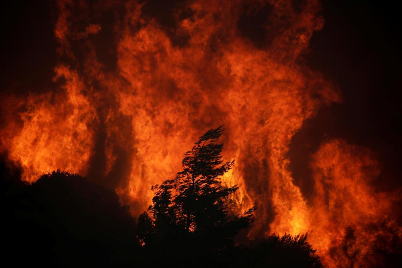 amazzonia incendio