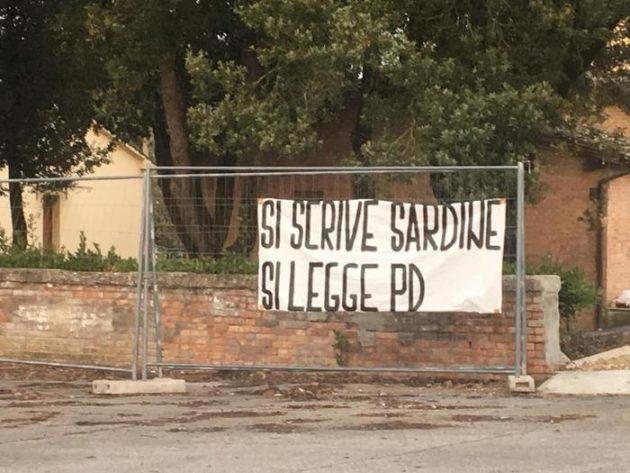 Sardine Siena