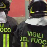 Salerno Gattino Ucciso