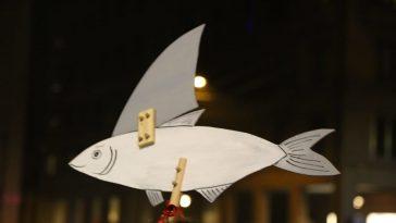 sondaggi sardine