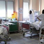 influenza suina nocera inferiore