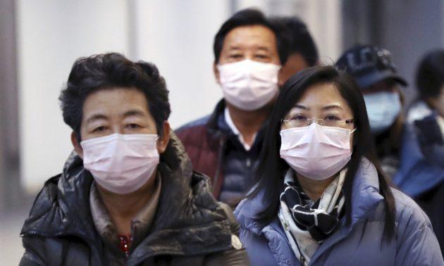 """Coronavirus, primo vaccino supera test sugli animali: """"Entro"""
