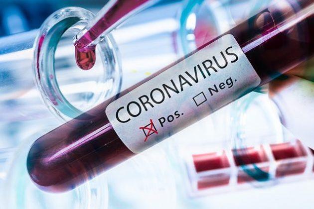 coronavirus medico guarito